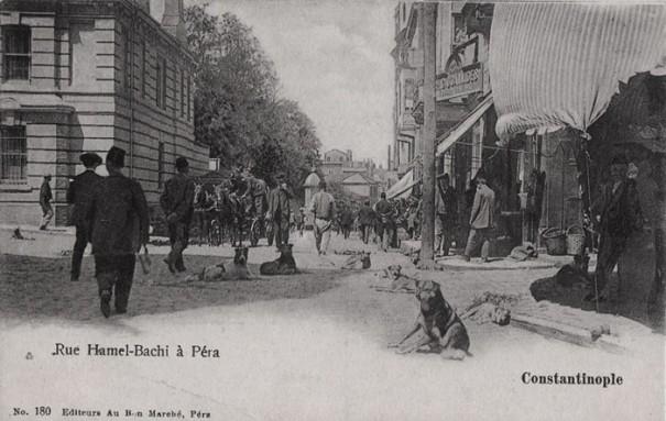 Le haut de la rue Hamalbaşı, vers 1900